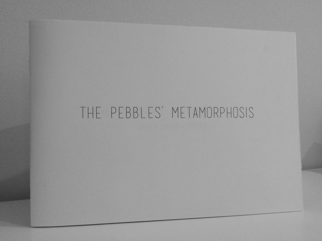The pebbles' metamorphosis - launch - Anne-Sophie Coiffet